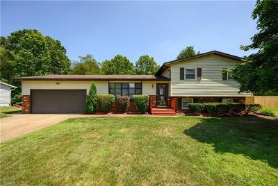 Single Family Home For Sale: 13484 Sunflower Avenue