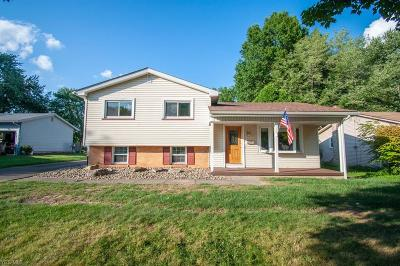Youngstown Single Family Home For Sale: 1719 Laurie Drive