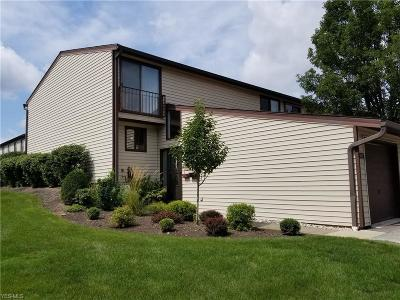 Middleburg Heights Condo/Townhouse For Sale: 14977 Pine Valley Trail #C30