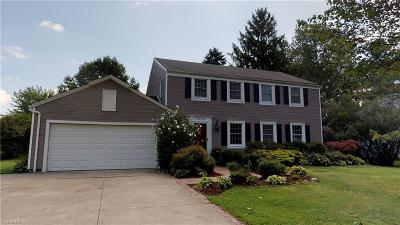 Hudson OH Single Family Home For Sale: $290,000
