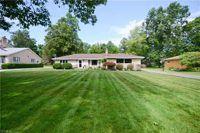 Youngstown Single Family Home For Sale: 4052 Lockwood Boulevard