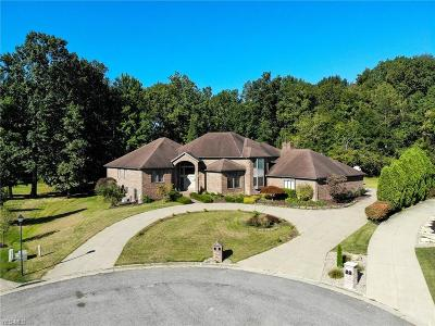 Poland Single Family Home For Sale: 8520 Twin Oaks Court