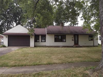 Elyria Single Family Home For Sale: 160 Dilworth Street