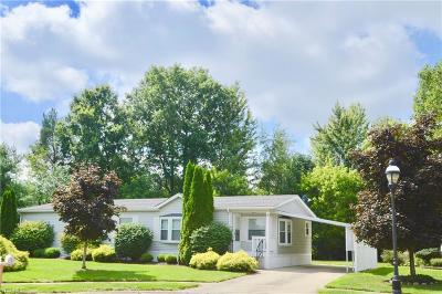 Olmsted Township Single Family Home For Sale: 3 Matthews Corner