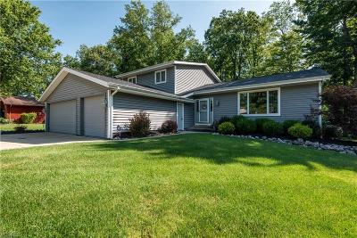 Brunswick Single Family Home For Sale: 1023 Fireside Drive