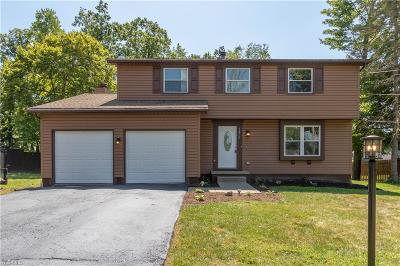 Canfield Single Family Home For Sale: 6879 Kirk Road