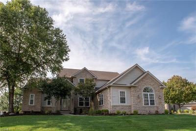 Sagamore Hills Single Family Home For Sale: 1263 Cliffden Court