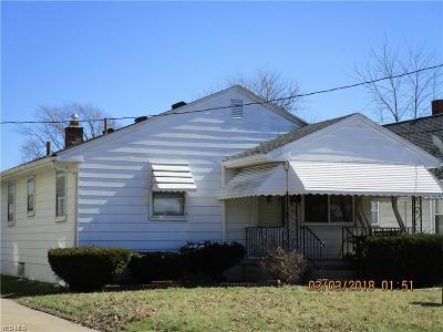 Youngstown Single Family Home For Sale: 151 N Hazelwood Avenue