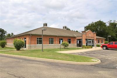 Zanesville Commercial For Sale: 3823 James Court