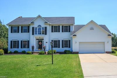 Hudson OH Single Family Home For Sale: $369,000