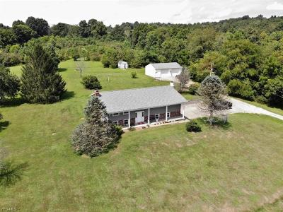 Muskingum County, Perry County, Guernsey County, Morgan County Single Family Home For Sale: 3760 Pert Hill Road