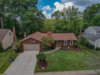 Strongsville Single Family Home For Sale: 20602 Sandalwood Lane