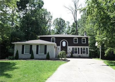 Medina County Single Family Home For Sale: 3598 Gottschee Court
