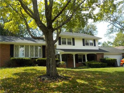 Medina Single Family Home For Sale: 880 Andrews Road