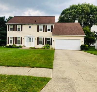 Twinsburg Single Family Home For Sale: 2267 Meadowood Boulevard