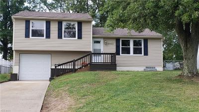 Youngstown Single Family Home For Sale: 5660 Stanford Avenue