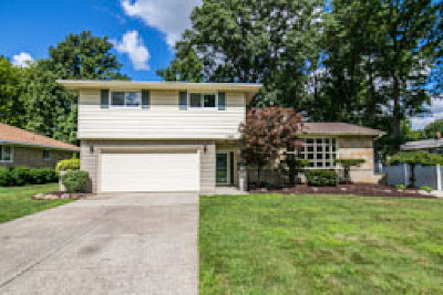 Seven Hills Single Family Home For Sale: 1049 Meadview Drive
