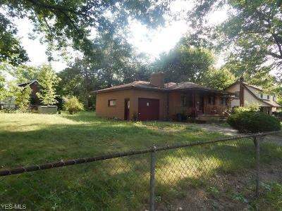 Youngstown Single Family Home For Sale: 311 Ferndale Avenue