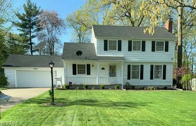 Canfield Single Family Home For Sale: 131 Dartmouth Drive