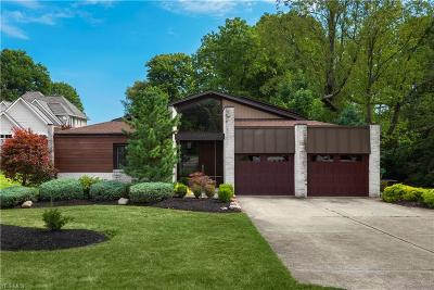 Bay Village Single Family Home For Sale: 30860 Lake Road