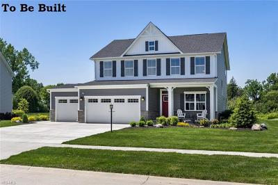 North Ridgeville Single Family Home For Sale: 36600 Rummel Mill Drive