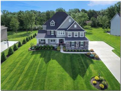 Brecksville Single Family Home For Sale: 10203 Woodlands Drive