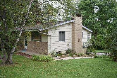 Kent Single Family Home For Sale: 7731 State Route 43