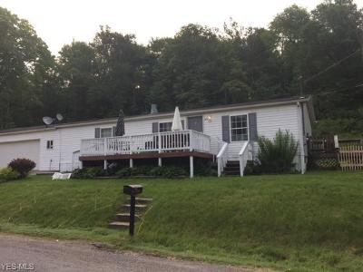 Muskingum County, Perry County, Guernsey County, Morgan County Single Family Home For Sale: 10554 Happydale Road