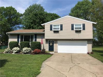 Twinsburg Single Family Home Active Under Contract: 9938 Joann Place