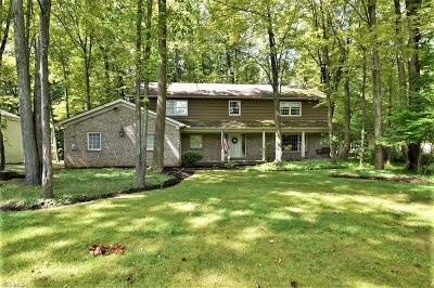 Broadview Heights Single Family Home For Sale: 8740 Avery Road