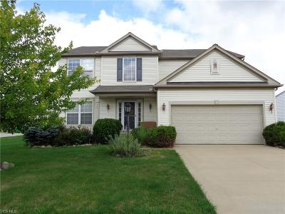 Medina County Single Family Home For Sale: 5057 Bringham Drive