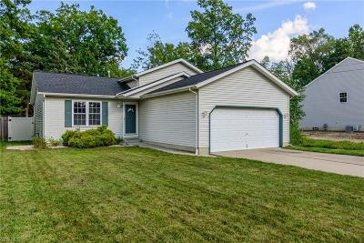 North Ridgeville Single Family Home For Sale: 5787 Eastview Avenue