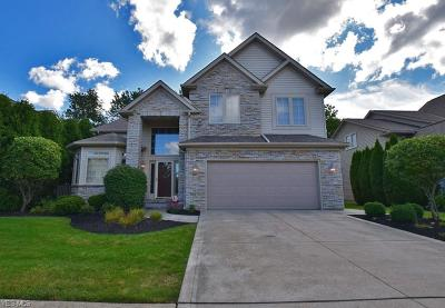 Highland Heights Single Family Home For Sale: 437 Augustus Drive