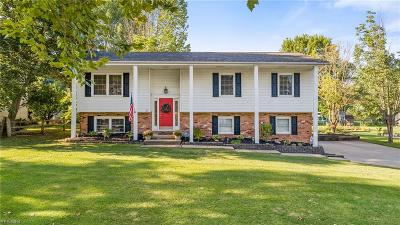 Aurora Single Family Home Active Under Contract: 57 Chelmsford Drive