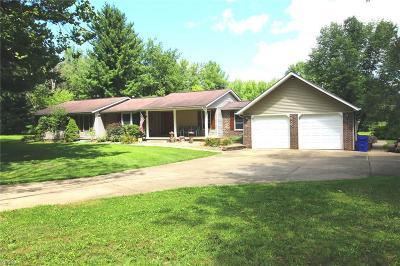 Garrettsville Single Family Home For Sale: 11538 Wheeler Road