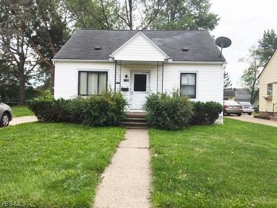 Lorain County Single Family Home For Sale: 1127 W 23rd Street