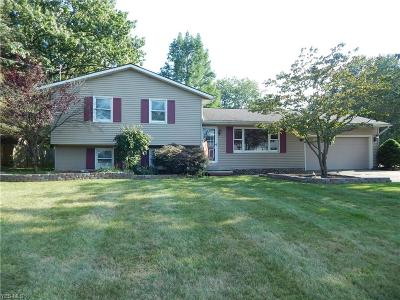 Lorain County Single Family Home For Sale: 1008 Dodge Drive