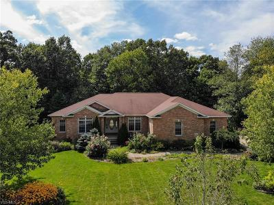 Kent Single Family Home Active Under Contract: 496 Overlook Drive