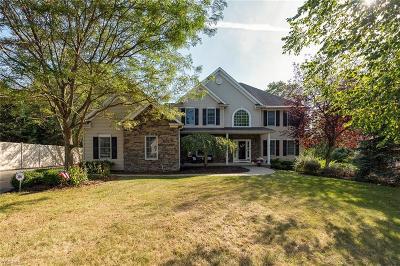 Single Family Home For Sale: 7965 Bainbrook Drive