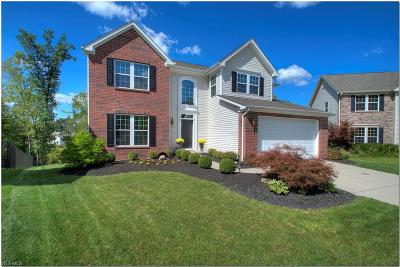 Twinsburg Single Family Home Active Under Contract: 9154 Jody Lynn Lane