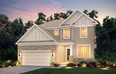 Twinsburg Single Family Home For Sale: 3033 Wyatt's Way