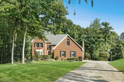 Newark Single Family Home For Sale: 1316 Stratford Woods Drive