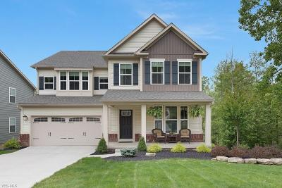 Twinsburg Single Family Home For Sale: 2710 Hunters Ridge
