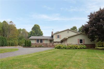 Chagrin Falls Single Family Home For Sale: 17001 Wing Road