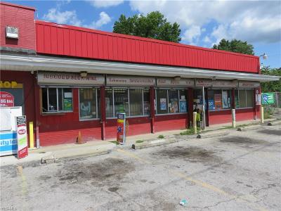 Commercial For Sale: 180 W Indianola Avenue