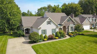 Lake County Single Family Home Active Under Contract: 197 Manchester Court
