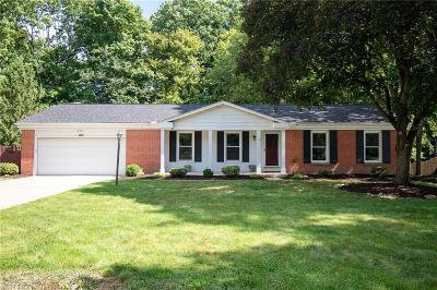 Single Family Home For Sale: 4005 Meadow Gateway Drive