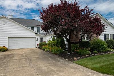 Painesville OH Condo/Townhouse Active Under Contract: $177,500