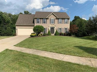 Reminderville Single Family Home For Sale: 10517 Crisfield Court