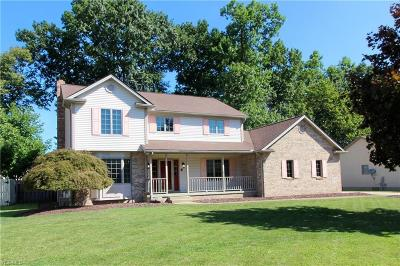 Austintown Single Family Home For Sale: 5240 N Beacon Drive
